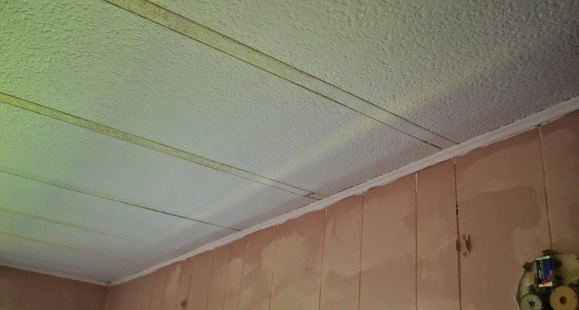 Afford Stain Blocker Mobile Home Ceiling
