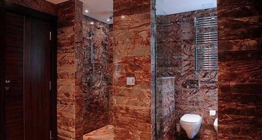 Bathroom Walk Shower Designs Ideas Top