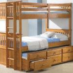 Buuk Bed Beds Can Used Everyone Elites Home