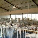 Farm House Prefab Pig Shed Buy Piggery