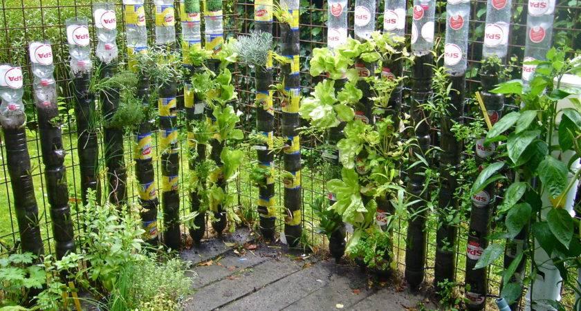Gardening Start Willem Van Cotthem Container
