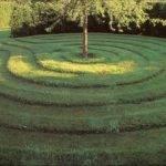 Geoco Outdoors Gardening Lawn Mowing Grass Cutting Rubbish