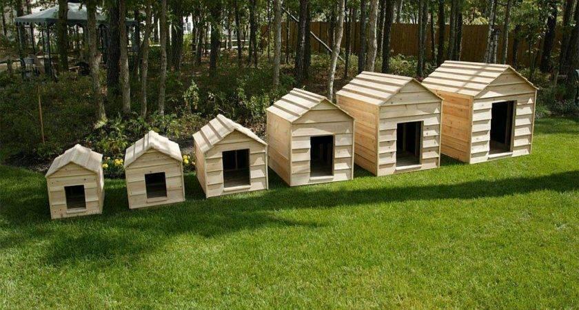 Giant Dog House Very Large Breeds