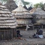 Houses South Sudan Including Urban Areas Grass Thatched