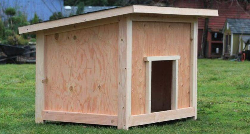 Large Dog House Plan Dogs Houses