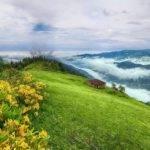 Plateau Houses Explore Trabzon