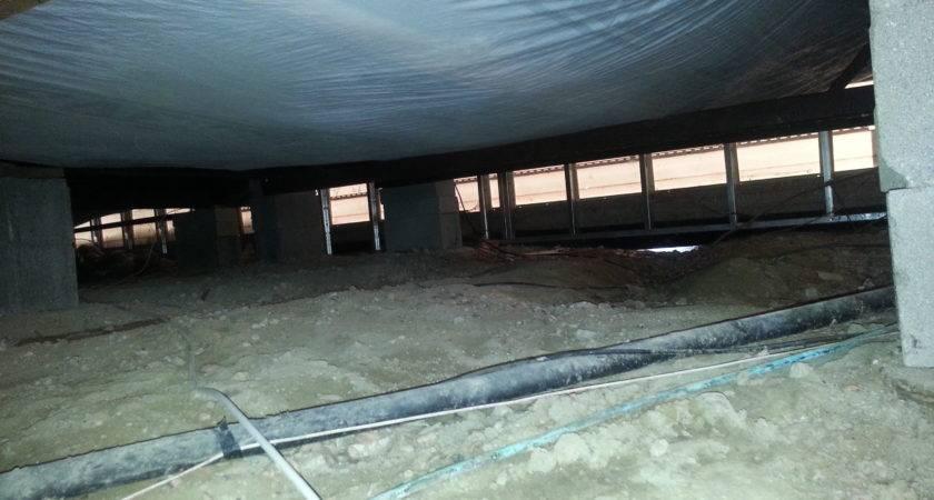 Possum Damaged Insulation Vapor Barrier Mobile Home Crawlspace