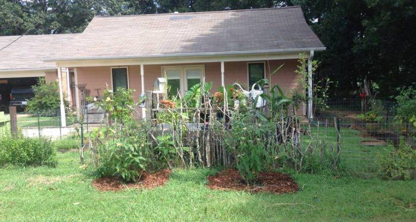 Private Country Pool House Houses Rent Tupelo