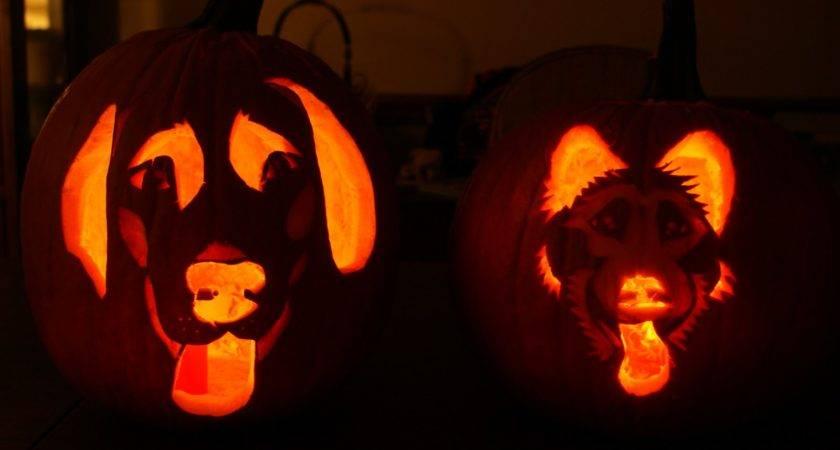 Pumpkin Carvings Halloween Party Cool Easy