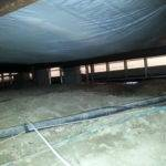 Restoration Animal Damaged Mobile Home Crawlspace Chesterfield