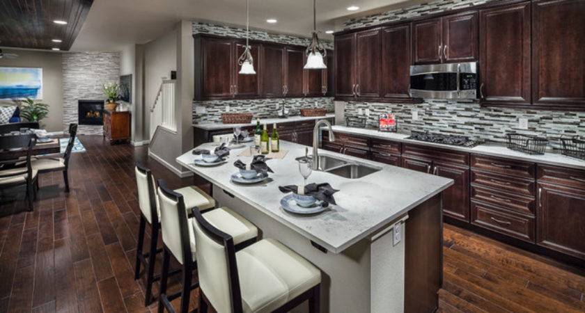 Ryland Homes Mcclelland Creek Vantage Model Home