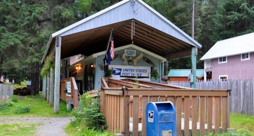 Tour Bears Hyder Alaska Stewart Yukon Territory Canada