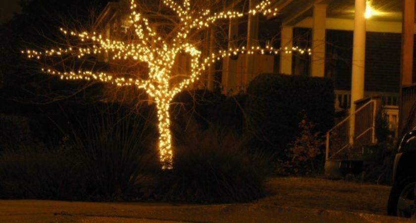 Yourself Christmas Lights Totalrenovationgroup